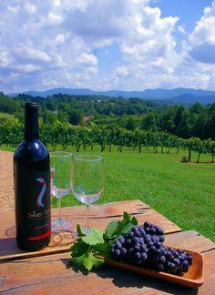 Silver Fork Winery in the North Carolina mountains near Morganton