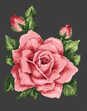 Vintage Rose cross stitch pattern, free from Alita Designs
