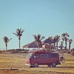 """""""Stuff your eyes with wonder, live as if you'd drop dead in ten seconds. See the world. It's more fantastic than any dream made or paid for in factories."""" – Ray Bradbury  #quotestoliveby #travel #VW #volkswagen #lapastora #baja #vanlife #palmtrees #beach #mexico #surf #van #bus"""