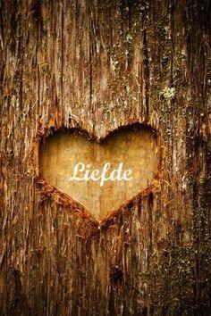 Liefde is... gezinnetje Vis ;-)