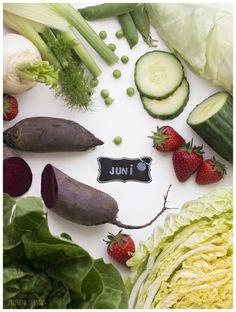 Juni preview Vorscha Rote Beete, Salat, Erbsen, Erdbeeren, Fenchen, Chinakohl, Spitzkohl und Gurke