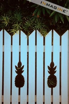 Pineapple Fence - Old Town Key West, FL I traced the actual pineapple cutout on vacation & used it for our gazebo in GA - spreading a little Key West around