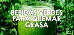 Las bebidas verdes nos ayudan a limpiar nuestro organismo, a mejorar nuestro sistema digestivo y a bajar de peso, descubre estas cuatro fáciles opciones.