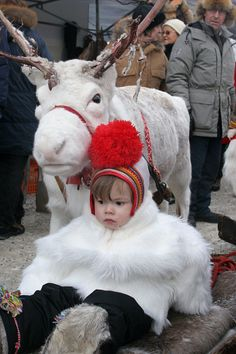 Saami girl and a white reindeer in the reindeer parade at the Jokkmokk Winter Market. Sweden. size to A4.: Sami, Jokkmokk Market: Arctic & Antarctic photographs, pictures & images from Bryan & Cherry Alexander Photography.