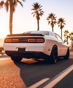 Dodge Challenger Hellcat, Dodge Charger Srt, Dodge Challenger Srt Hellcat, Dodge Srt, Charger Srt Hellcat, Carros Vw, R35 Gtr, Dodge Muscle Cars, Street Racing Cars