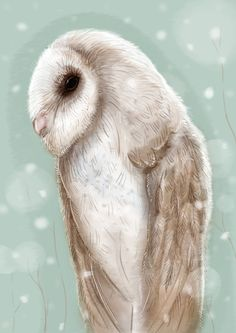 http://society6.com/product/winter-owl-xrf_print?curator=owlpages#1=45