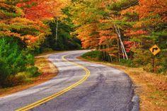 New England's Foliage, USA