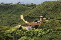 Fuente: Finca cafetera, Caldas. Ministerio de Cultura - David Bonilla Abreo.  El paisaje cultural cafetero (Caldas, Quindío y Risaralda) fue declarado en 2011 como patrimonio.