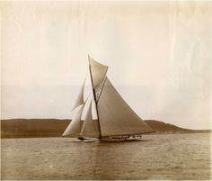 """lazyjacks: """"Shamrock I sailing off the Scottish coast, 1901 The National Archives UK, COPY """" Classic Yachts, Classic Sailing, Float Your Boat, Need A Vacation, Sail Away, Set Sail, Wooden Boats, Tall Ships, Water Crafts"""