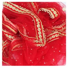 anokherang Dupattas Red Net Stone and Thread Embroidered Dupatta