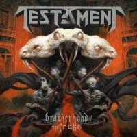 Testament - The Brotherhood Of The Snake - Metal Storm