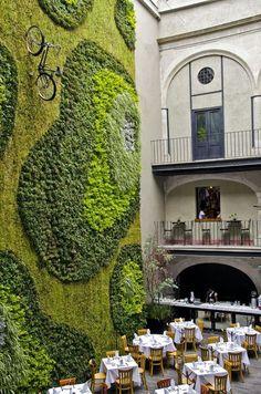 22 exemples de murs de mousse pour donner un côté forestier à votre intérieur  2Tout2Rien