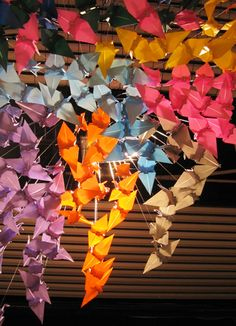 The paper cranes take flight