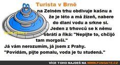 Turista v Brně na Zelném trhu obdivuje… Jokes, Bible, Humor, Funny, Biblia, Cheer, Husky Jokes, Humour, Animal Jokes