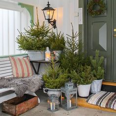 "Søgard anno 1898 🏡 Norway (@janne_paalandet) på Instagram: ""Idag har jeg hatt tynning i skogen min 😅🌲 -som så ble vinterpynt til inngangspartiet. Det får bli…"" Christmas Inspiration, Instagram Posts, Plants, Noel, Plant, Planets"