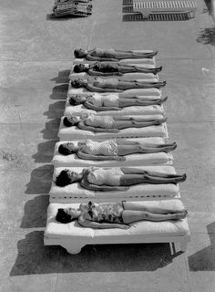 A long line of sunbathing 1950s beauties in stylish one piece swimsuits. #vintage #1950s #summer #swimsuit