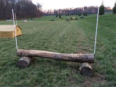 New Cross Country Jumps