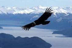 Patagonia argentina, cordillera de los Andes