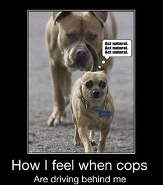 Totally! How I feel when cops are behind me... Act natural!
