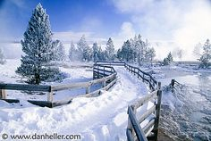 yellowstone+in+winter | winter in yellowstone national park yellowstone wyoming usa see more ...
