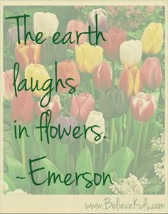 """""""The earth laughs in flowers."""" ~Emerson  Perfect spring quote! Bring the flowers."""