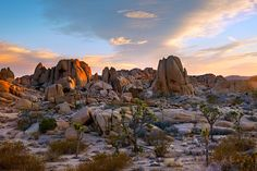 A colorful sunrise accentuates the rocky and barren landscape of the Mohave Desert in Joshua Tree National Park near the Jumbo Rocks campground. Photo © Michael Greene.