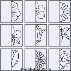 Draw the missing half of an insect to complete the picture! These drawing prompts are good for studying symmetry and entomology with kids at the same time. School Art Projects, Art School, Summer Art Projects, Art Sub Lessons, Arte Elemental, Art Sub Plans, Art For Kids, Drawing For Kids, Art Handouts