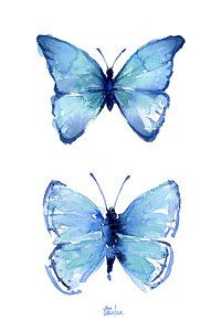 Two Blue Butterflies Watercolor Print by Olga Shvartsur