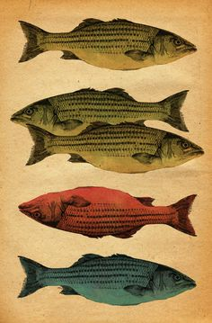 One Fish, Two Fish...  by Megstuff