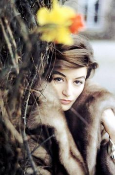 New post on Love Vintage, Vintage Beauty, Anouk Aimée, French Beauty, French Actress, Jolie Photo, Magnum Photos, Women In History, Beautiful Actresses