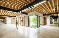 Galeria - Edifício Richard Ivey / Hariri Pontarini Architects - 7