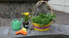 How To Make Easter Crafts for Kids With Herbs: Planting a Living Easter Basket Tutorial | Herbal Academy | If you are looking for a break from the ordinary Easter crafts for kids, this living Easter basket is sure to please!
