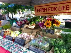 Farmers Market Booth Ideas | Colourful, multi-tiered booth presentations with clear product ...