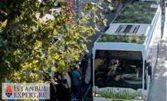 Общественный транспорт Стамбула пополнился необычным автобусом