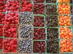 How to Prevent Moldy Berries - need to try this