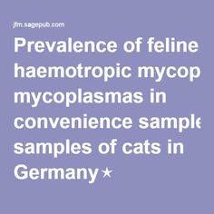 Prevalence of feline haemotropic mycoplasmas in convenience samples of cats in Germany⋆