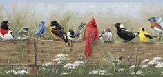 Songbird Menagerie Wallpaper Border
