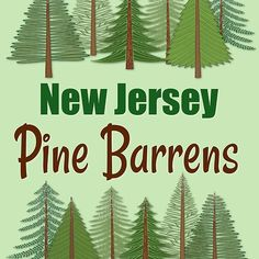 New Jersey Pine Barrens is a vast and beautiful wilderness! This design comes on mugs, shirts, cards and more. I welcome you to click through and see my designs! Have a wonderful day on this beautiful planet earth!