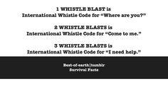 Whistle Code