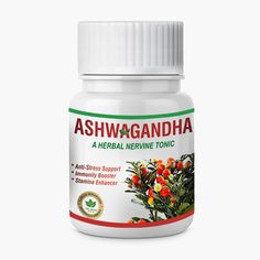 Ashwagandha- It protects & boosts immune system, reduces stress & anxiety, stabilize blood sugar level & cholesterol level, improve memory, enhances sexual stamina. Anti Stress, Stress And Anxiety, Heart Care, Boost Immune System, Herbal Extracts, Cholesterol Levels, Good Sleep, Reduce Stress, Ayurveda