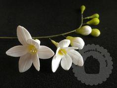 Fresia: Flores de azúcar módulo PME en La tienda Americana