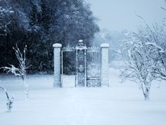 Image for In the Bleak Midwinter by Malin James