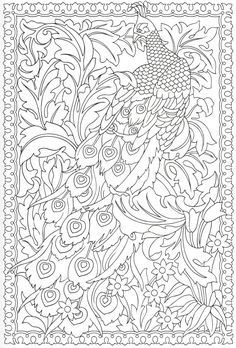 Peacock coloring page 14/31