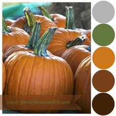 Family Home and Life: Pumpkins Color Palette