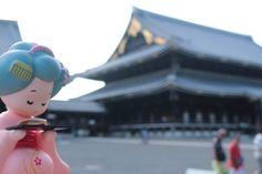 『小さいおたべちゃんin東本願寺』  関東では台風の影響で荒れた天気が続いていますが、ここ京都では厳しい暑さが続いていますね。 皆さんお身体大丈夫ですか?  先日、東本願寺に行ってきました! 東本願寺は京都駅から徒歩7分、烏丸通りに面しており、浄土真宗「真宗大谷派」の本山で知られています。 行った日にちょうど「食とアートのマーケット」が開催されてる事もあり、沢山の人で賑わっていました♪