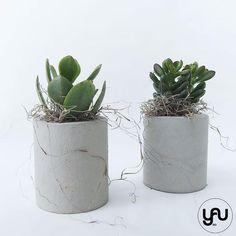 Marturii plante suculente in suport turnat CILINDRIC- M32 - https://www.yau.ro/collections/marturii-nunta-si-botez?page=1 - yauconcept - elenatoader