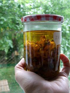 st john's Wort oil - for sciatica , muscle cramps , sore muscles , wound healing ( like c - section ) and hemorrhoids during pregnancy .... Also great for your first aid kit for healing your kids  scraps , burns , bruises and cuts
