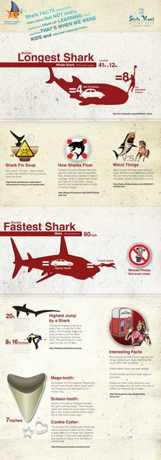 Things You Never Knew About Sharks @Rachel Pearson ...Im sure you knew this, but if not.. here ya go ya goon