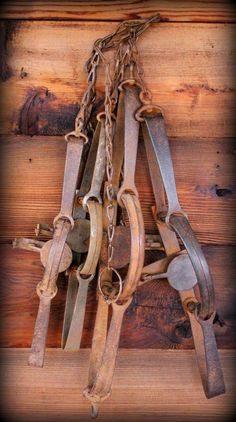 Dave Canterbury, David Canterbury, The Pathfinder School, Bush Craft, Survival skills, Historical Lore, Primitive Skills,