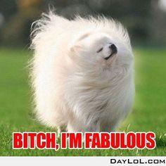 Fabulous bitch I am!